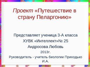 Проект «Путешествие в страну Пеларгонию» Представляет ученица 3-А класса ХУВК
