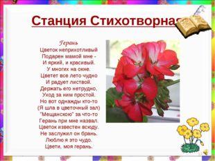 Станция Стихотворная * Герань Цветок неприхотливый Подарен мамой мне - И ярки