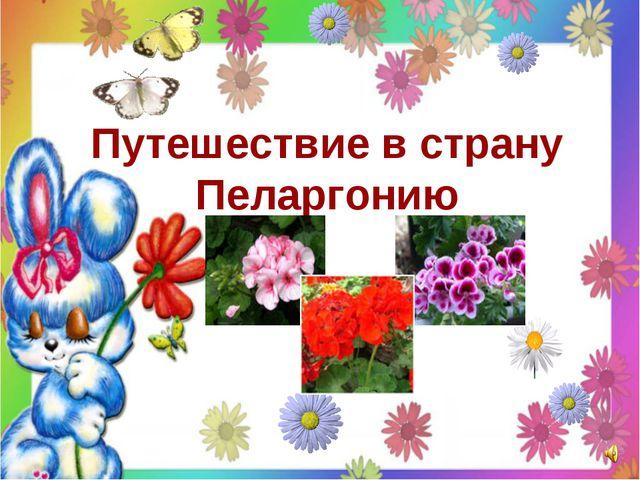 Путешествие в страну Пеларгонию