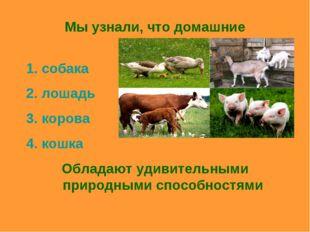 Мы узнали, что домашние животные: собака лошадь корова кошка Обладают удивите