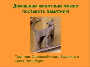 Домашним животным можно поставить памятник! Памятник блокадной кошке Василисе