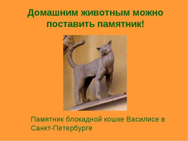 Домашним животным можно поставить памятник! Памятник блокадной кошке Василисе...