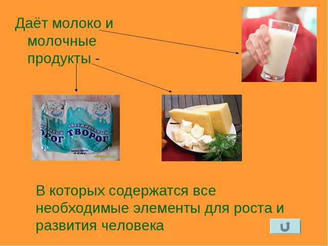 Даёт молоко и молочные продукты - В которых содержатся все необходимые элемен...