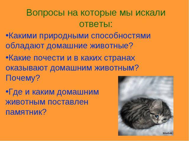 Какими природными способностями обладают домашние животные? Какие почести и в...