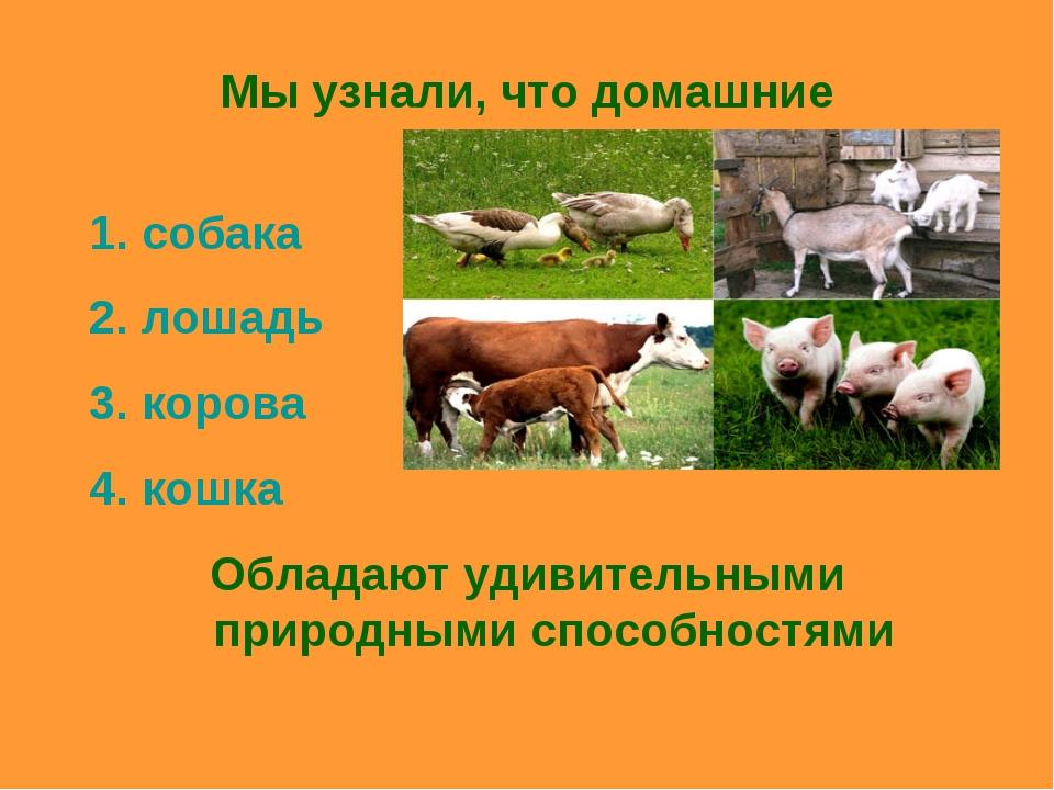 Мы узнали, что домашние животные: собака лошадь корова кошка Обладают удивите...