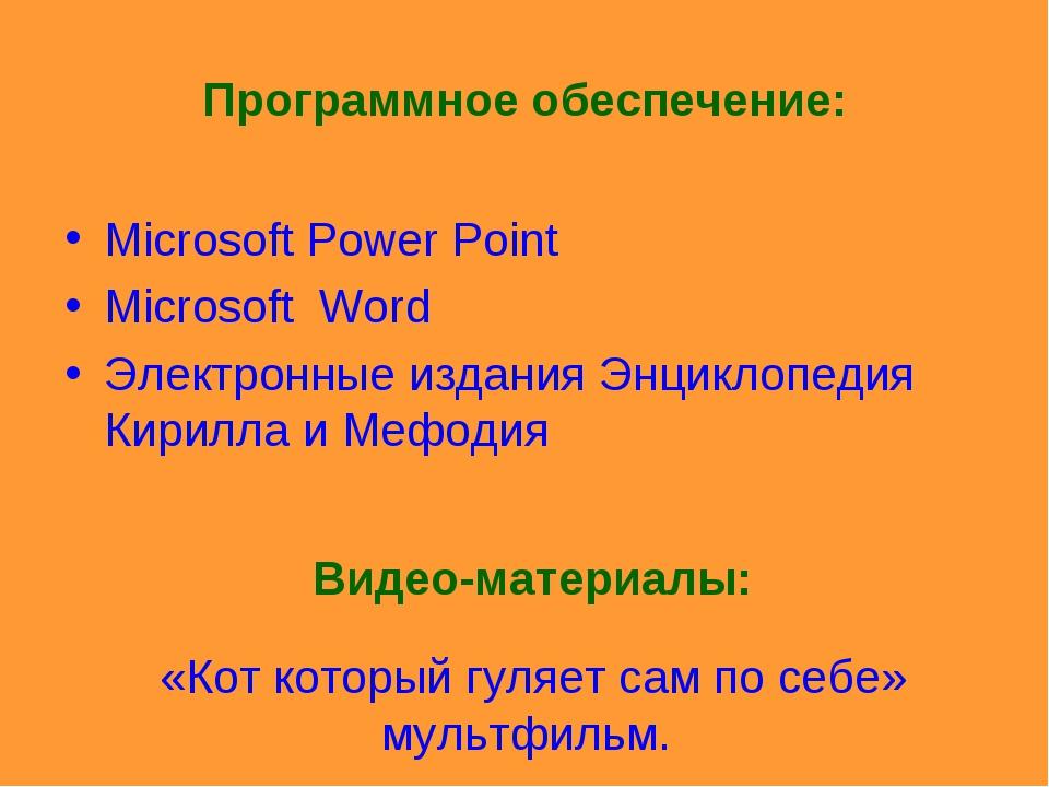 Программное обеспечение: Microsoft Power Point Microsoft Word Электронные изд...