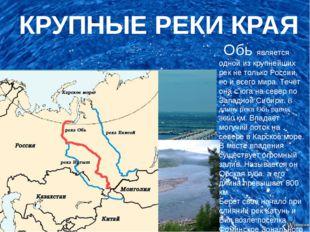 КРУПНЫЕ РЕКИ КРАЯ Обь является одной из крупнейших рек не только России, но