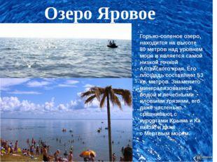 Озеро Яровое Горько-соленое озеро, находится на высоте 80 метров над уровнем
