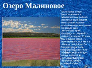 Малиновое озеро, расположенное в Михайловском районе, является крупнейшим бе