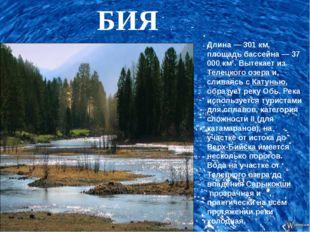 БИЯ Длина — 301 км, площадь бассейна — 37 000 км². Вытекает изТелецкого озе