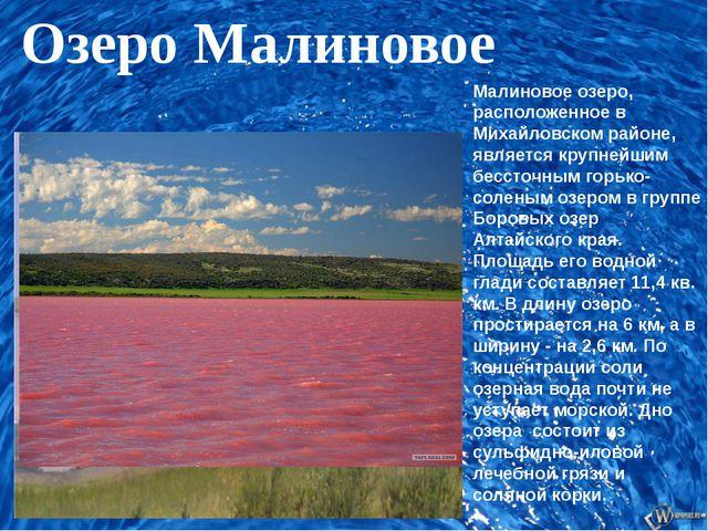 Малиновое озеро, расположенное в Михайловском районе, является крупнейшим бе...