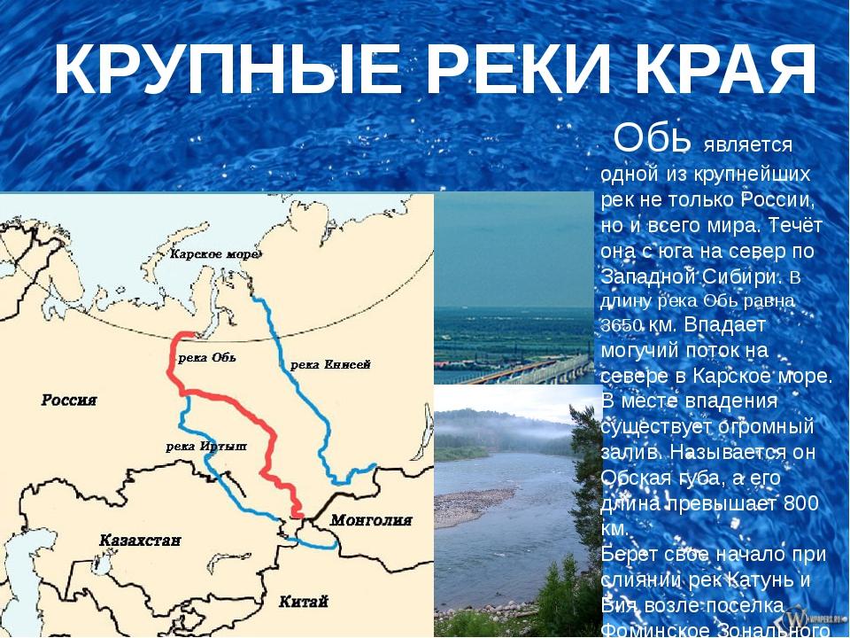 КРУПНЫЕ РЕКИ КРАЯ Обь является одной из крупнейших рек не только России, но...