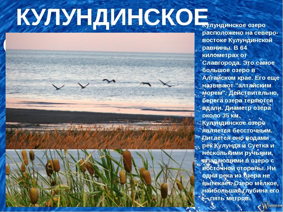 КУЛУНДИНСКОЕ ОЗЕРО Кулундинское озеро расположено на северо-востоке Кулундин...