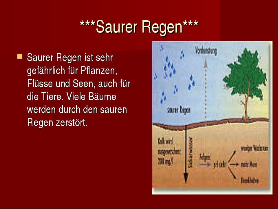 ***Saurer Regen*** Saurer Regen ist sehr gefährlich für Pflanzen, Flüsse und...