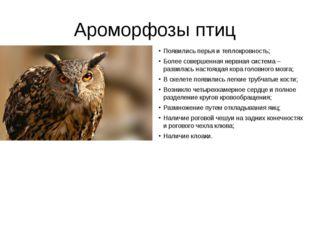 Ароморфозы птиц Появились перья и теплокровность; Более совершенная нервная с