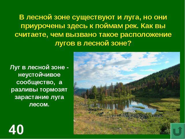 В лесной зоне существуют и луга, но они приурочены здесь к поймам рек. Как вы...