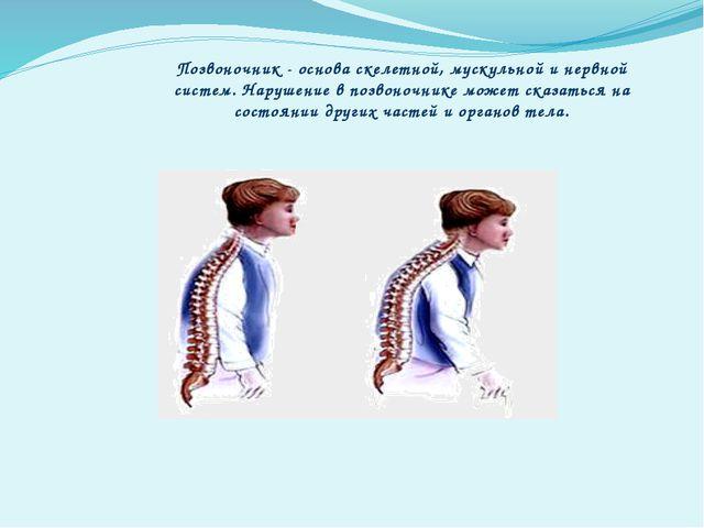 Позвоночник - основа скелетной, мускульной и нервной систем. Нарушение в позв...