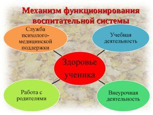 Механизм функционирования воспитательной системы