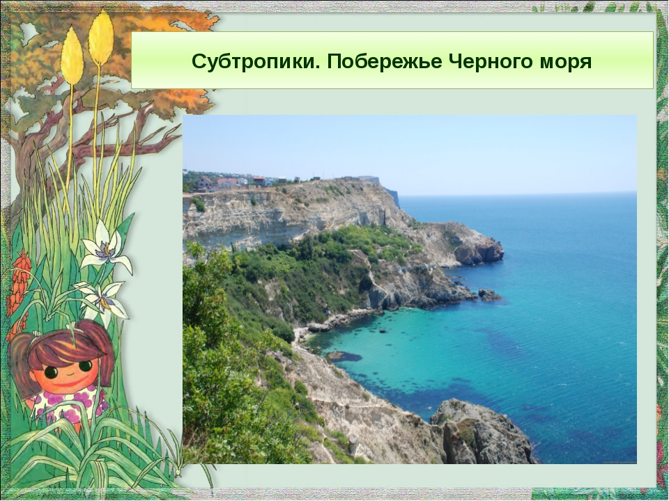 Субтропики. Побережье Черного моря