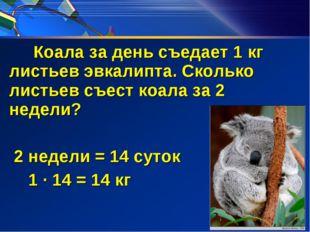 Коала за день съедает 1 кг листьев эвкалипта. Сколько листьев съест коала за
