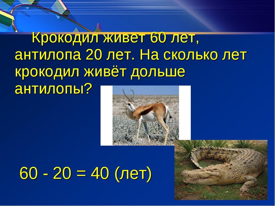 Крокодил живет 60 лет, антилопа 20 лет. На сколько лет крокодил живёт дольше...