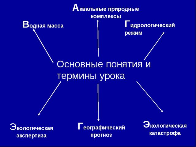 Основные понятия и термины урока Экологическая экспертиза Экологическая кат...