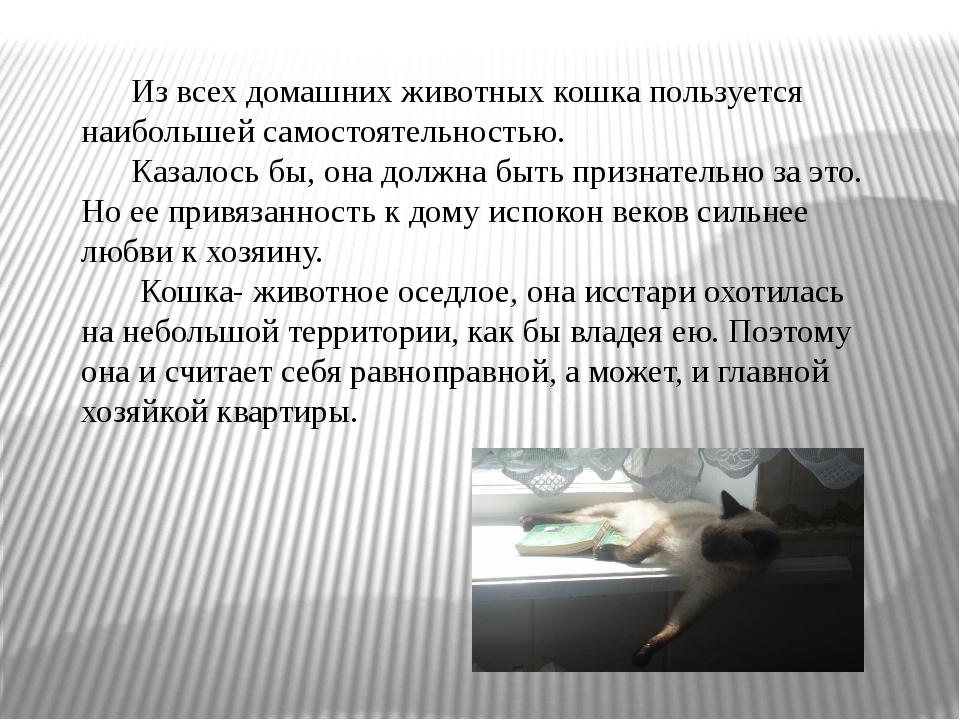 Из всех домашних животных кошка пользуется наибольшей самостоятельностью. Ка...