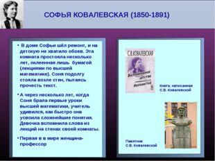 СОФЬЯ КОВАЛЕВСКАЯ (1850-1891) В доме Софьи шёл ремонт, и на детскую не хватил