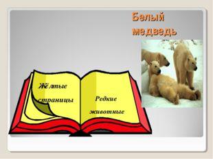Белый медведь Жёлтые страницы Редкие животные