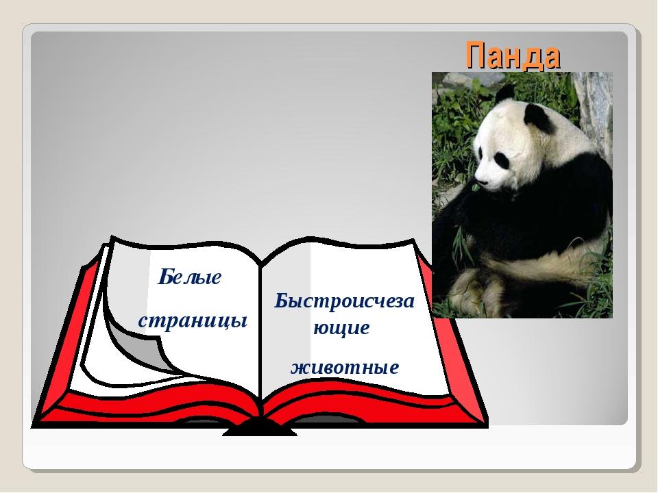 Панда Белые страницы Быстроисчезающие животные