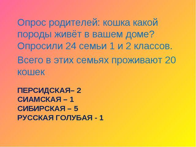 ПЕРСИДСКАЯ– 2 СИАМСКАЯ – 1 СИБИРСКАЯ – 5 РУССКАЯ ГОЛУБАЯ - 1 Опрос родителей:...