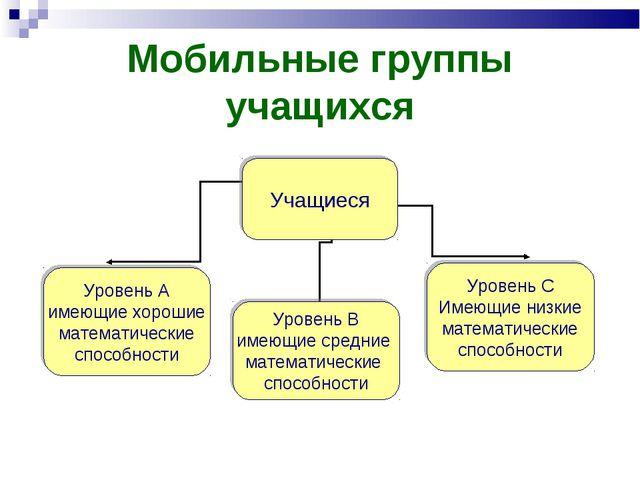 Мобильные группы учащихся