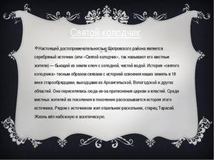 Святой колодчик Настоящей достопримечательностью Шатровского района является