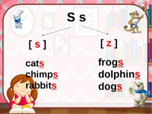 cats chimps rabbits [ s ] [ z ] frogs dolphins dogs S s bayovan