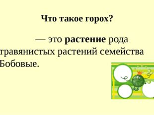 Что такое горох? Горо́х — это растение рода травянистых растений семейства Бо