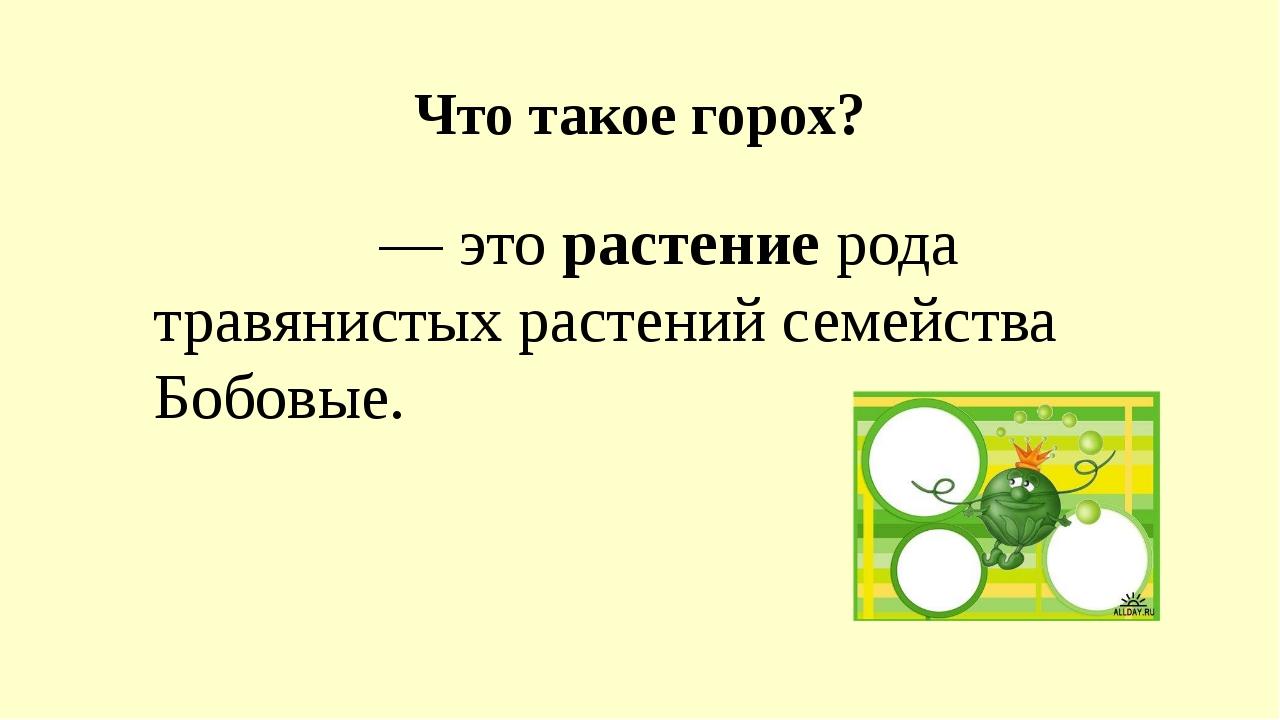 Что такое горох? Горо́х — это растение рода травянистых растений семейства Бо...