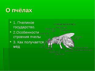 О пчёлах 1. Пчелиное государство. 2.Особенности строения пчелы 3. Как получае