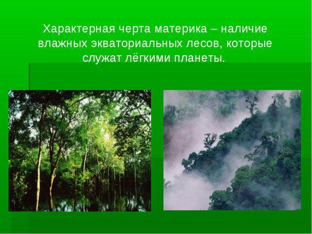 Характерная черта материка – наличие влажных экваториальных лесов, которые сл...