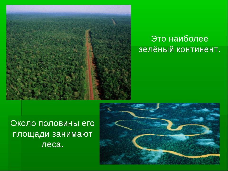 Это наиболее зелёный континент. Около половины его площади занимают леса.