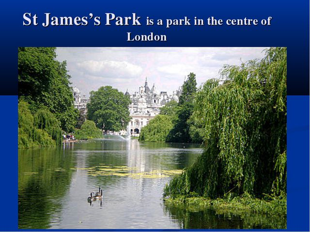 St James's Park is a park in the centre of London