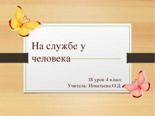 18 урок 4 класс Учитель: Игнатьева О.Д. На службе у человека