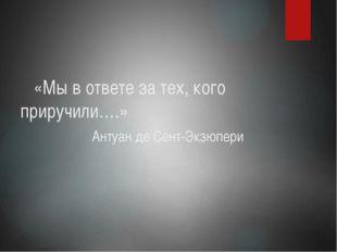 «Мы в ответе за тех, кого приручили….»                 Антуан де Сент-Экзюпери