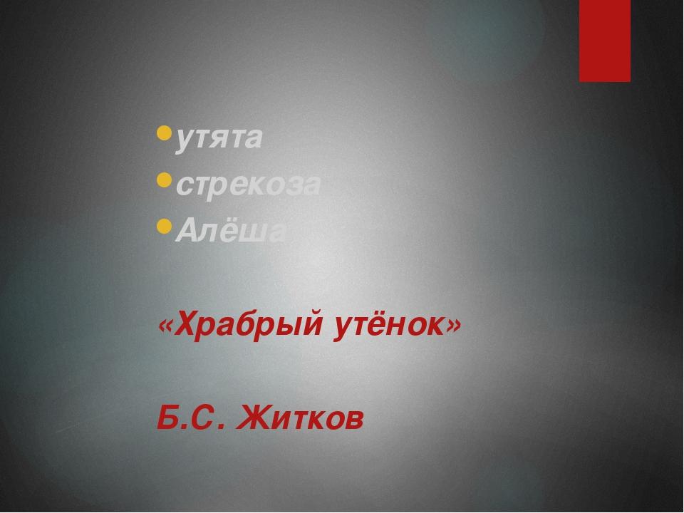 утята утята стрекоза Алёша  «Храбрый утёнок»  Б.С. Житков