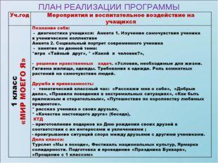 ПЛАН РЕАЛИЗАЦИИ ПРОГРАММЫ