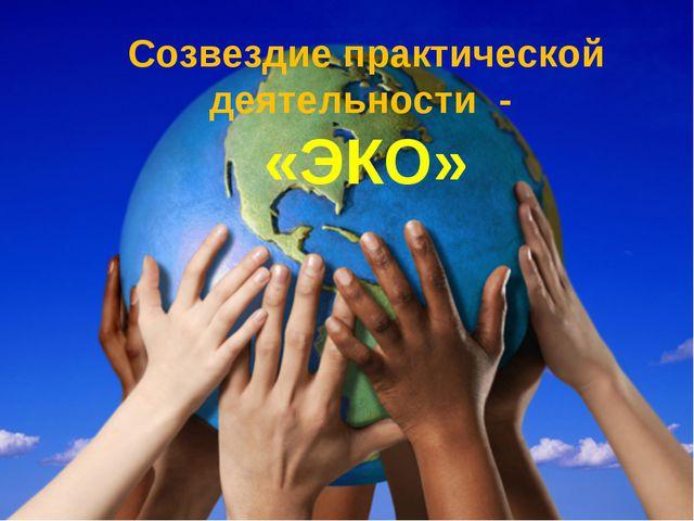 Созвездие практической деятельности - «ЭКО»