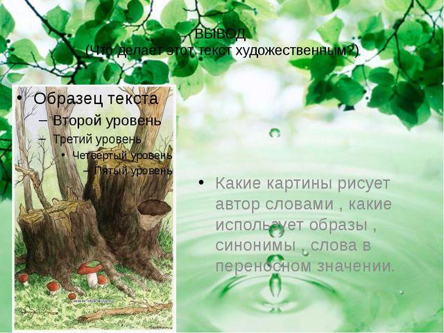 ВЫВОД (Что делает этот текст художественным?) Какие картины рисует автор слов...