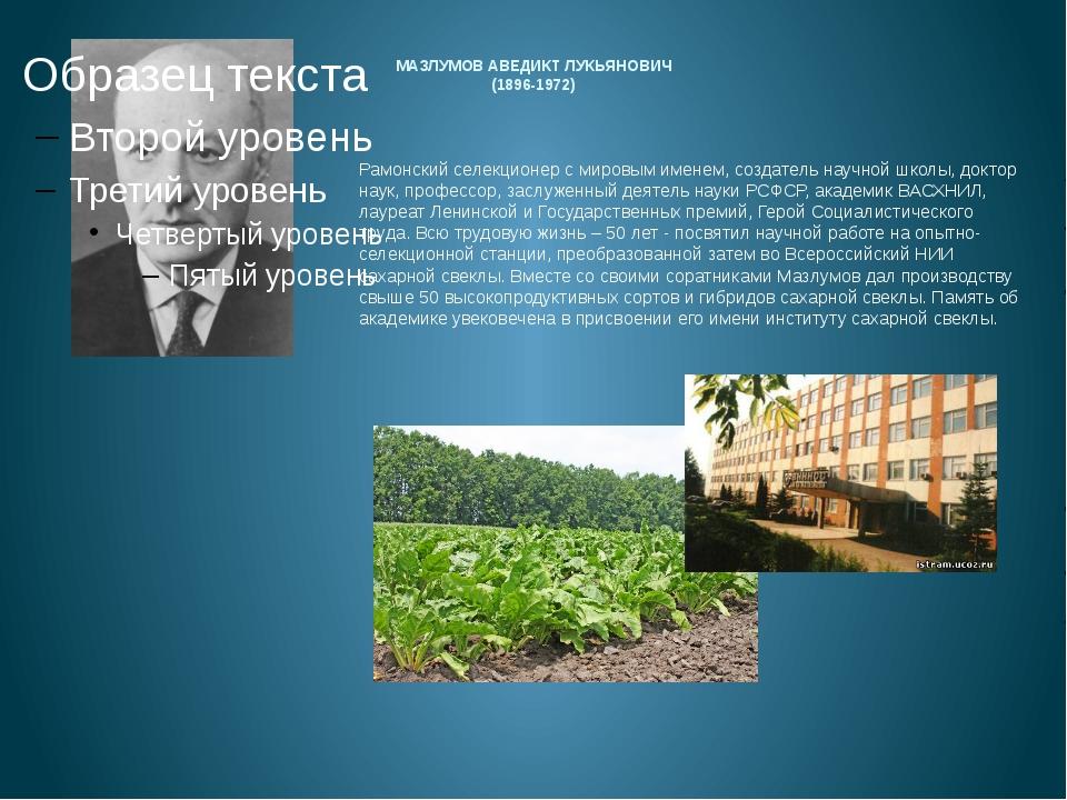 МАЗЛУМОВ АВЕДИКТ ЛУКЬЯНОВИЧ (1896-1972) Рамонский селекционер с мировым имен...