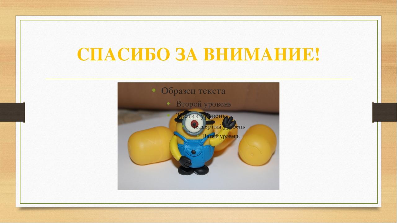 СПАСИБО ЗА ВНИМАНИЕ! Рождественская И.Б. ГКОУ СКОШИ №52