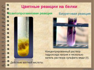 Ксантопротеиновая реакция Цветные реакции на белки Биуретовая реакция Концент