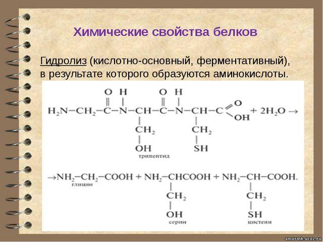 Химические свойства белков Гидролиз (кислотно-основный, ферментативный), в ре...